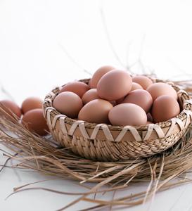 有机柴鸡蛋